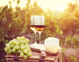 Wein & Käse Verkostung von mehreren Weinen & Sorten Käse