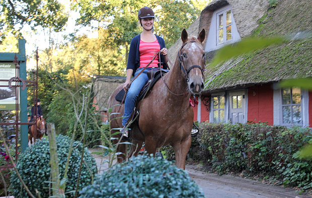 pferde-reiten-schnupperkurs