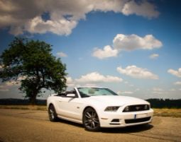 Mustang GT Cabrio fahren - 1 Tag (Fr.-So.) Ford Mustang GT Cabrio - 1 Tag (Fr - So)