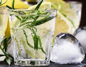 Gin Tasting Koblenz