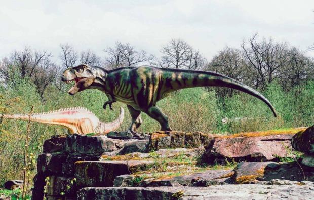 ernzen-sleeperoo-uebernachtung-dinosaurier