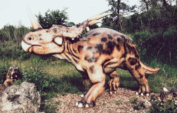 ernzen-sleeperoo-uebernachtung-triceratops