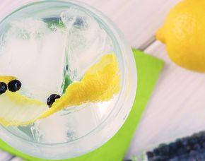 Gin-Tasting - Heppenheim von 5 Sorten Gin & 2 Tonic Water
