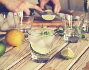 Gin Tasting - Schwetzingen von 6 Sorten Gin