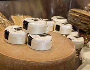 Käse selber machen - Hungen von einer Sorte mit Verkostung