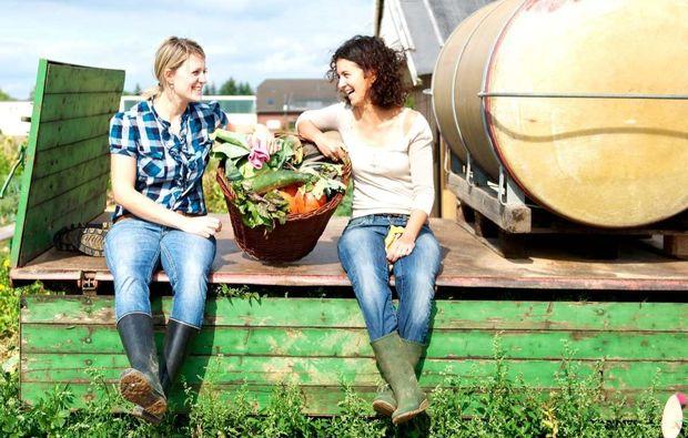 urban-gardening-duesseldorf-volmerswerth-ernten