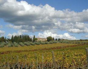 Bella Italia Fattoria Casa Sola - Mittagessen, Weinprobe