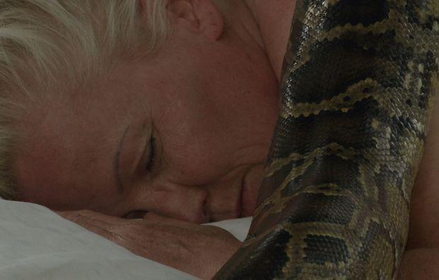fuer-massage-schlangen-zwei-passow