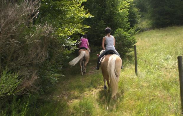 sassenburg-pferde-abenteuer-reiten