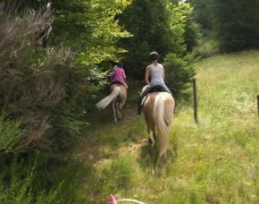 Pferde-Abenteuer Sassenburg