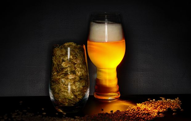 braukurs-nuernberg-bier
