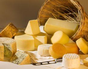 Käseverkostung - mit Wein - Bad Tölz von 18 Käse Sorten & 5 Weinen