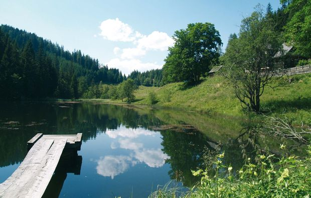 urlaub-mit-hund-st-lambrecht-see