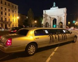 limo-party