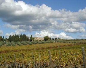 Soggiorno e vino Fattoria Casa Sola - 4-Gänge-Menü, Weinprobe, Weinbergsführung