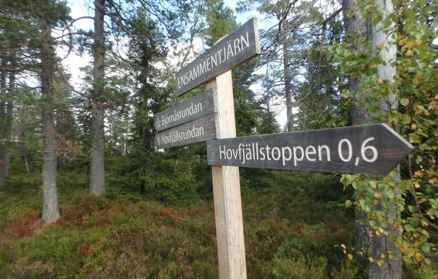 aktivurlaub-an-land-torsby-vaermland