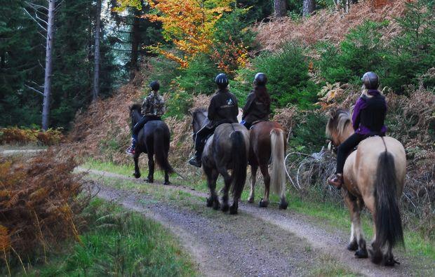forbach-hundsbach-pferde-abenteuer-pferdereiten