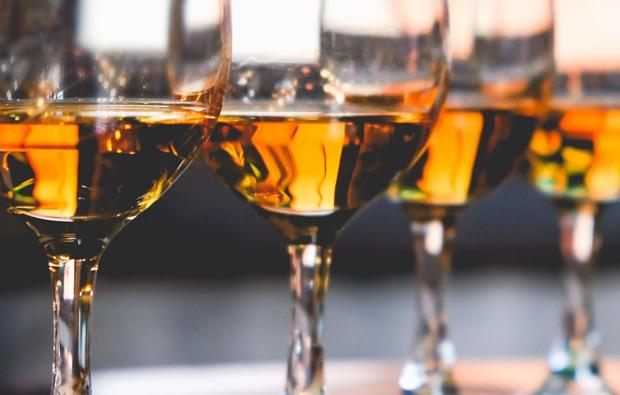 whisky-tasting-in-koeln-verkosten
