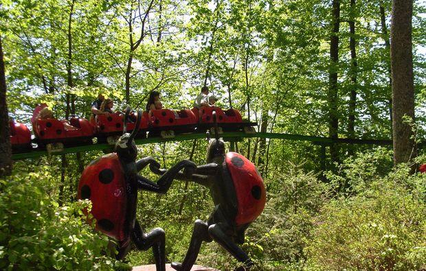freizeitpark-sonnenbuehl-marienkaefer
