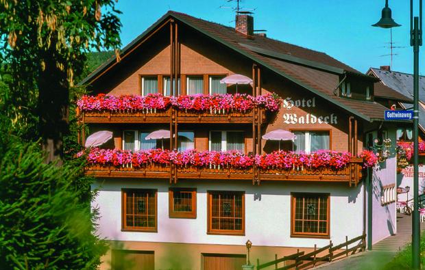 hotel-waldeck-feldberg_big_1