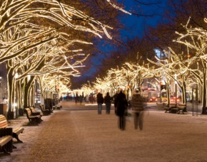 Berlin_GYG Lichterfahrt+Christmas Garden Weihnachtliche Lichtertour durch Berlin & Christmas Garden