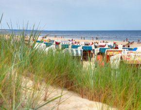 Kurzurlaub am Meer - 3 ÜN - Ostseebad Trassenheide SEETELHOTEL Familienresort Waldhof – Abendessen