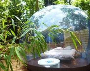 Übernachtung im Bubble im Bubble Hotel