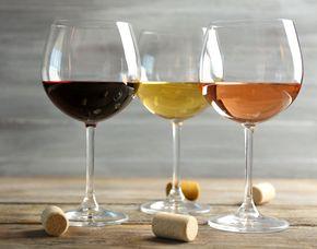 Wein- und Insektenverkostung - Kleine Fabrik - Köln-Nippes von 6 Weinen & 5 Insekten