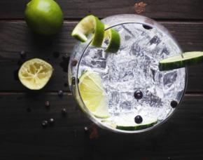 Gin Tasting Dortmund
