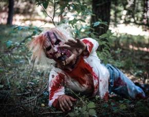 Zombie Survival Frechen Überlebenstrainig mit Zombie-Statisten