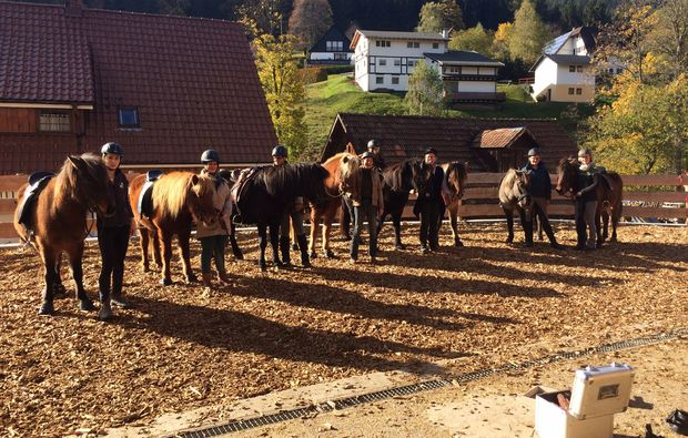pferde-abenteuer-forbach-hundsbach-pferdehof