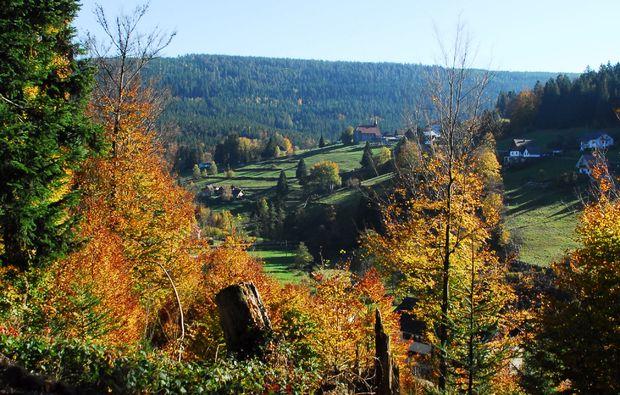 pferde-abenteuer-forbach-hundsbach-schwarzwald