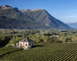 Soggiorno e vino Fattoria l'Amorosa - 3-Gänge-Menü
