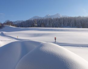 Aktivurlaub - 2 ÜN - Schneeschuhwanderung Gästehaus Katharina - 3-Tages-Langlaufkarte, Schneeschuhwanderung