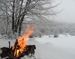 Survivalkurs Winter - Deutschnofen Winter Kurs inkl. Schneehöhlen Bau, Feuermachen, Wanderung