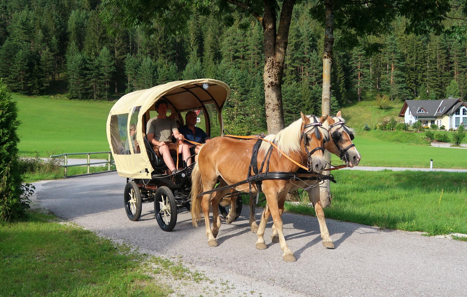 picknickfahrt-mit-kutschenwagen-bg3