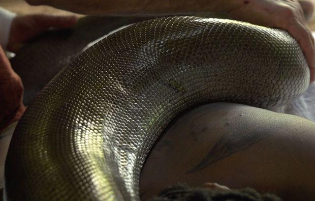schlangenmassage-6