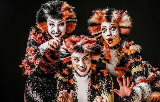 musical-dinner-callenberg-cats