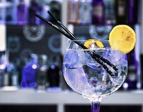 Whisky & Co. - Gin Tasting - 69 Euro - Dornbirn von mind. 6 Sorten Gin & Tonic Water