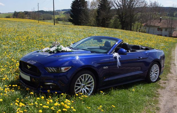 ford-mustang-fahren-dietmannsried-luxus