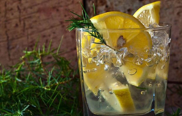 gin-tasting-stuttgart-genuss