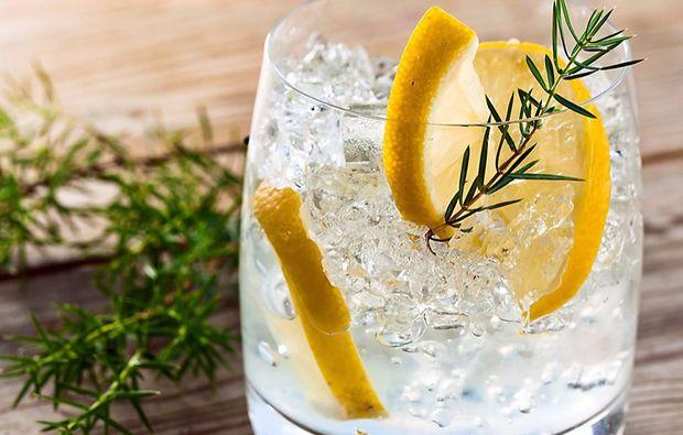 gin-tasting-stuttgart-limette