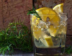 Gin-Tasting - High End - Stuttgart von 10 Sorten Gin & Tonic Water