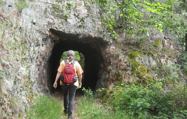 bad-muenster-am-stein-ebernburg-weinbergwanderung