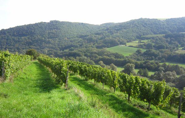 weinbergwanderung-bad-muenster-am-stein-ebernburg