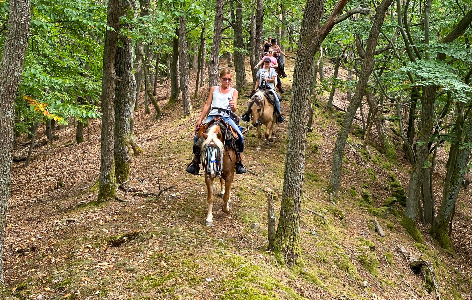 pferde-abenteuer-aschbach-bg1