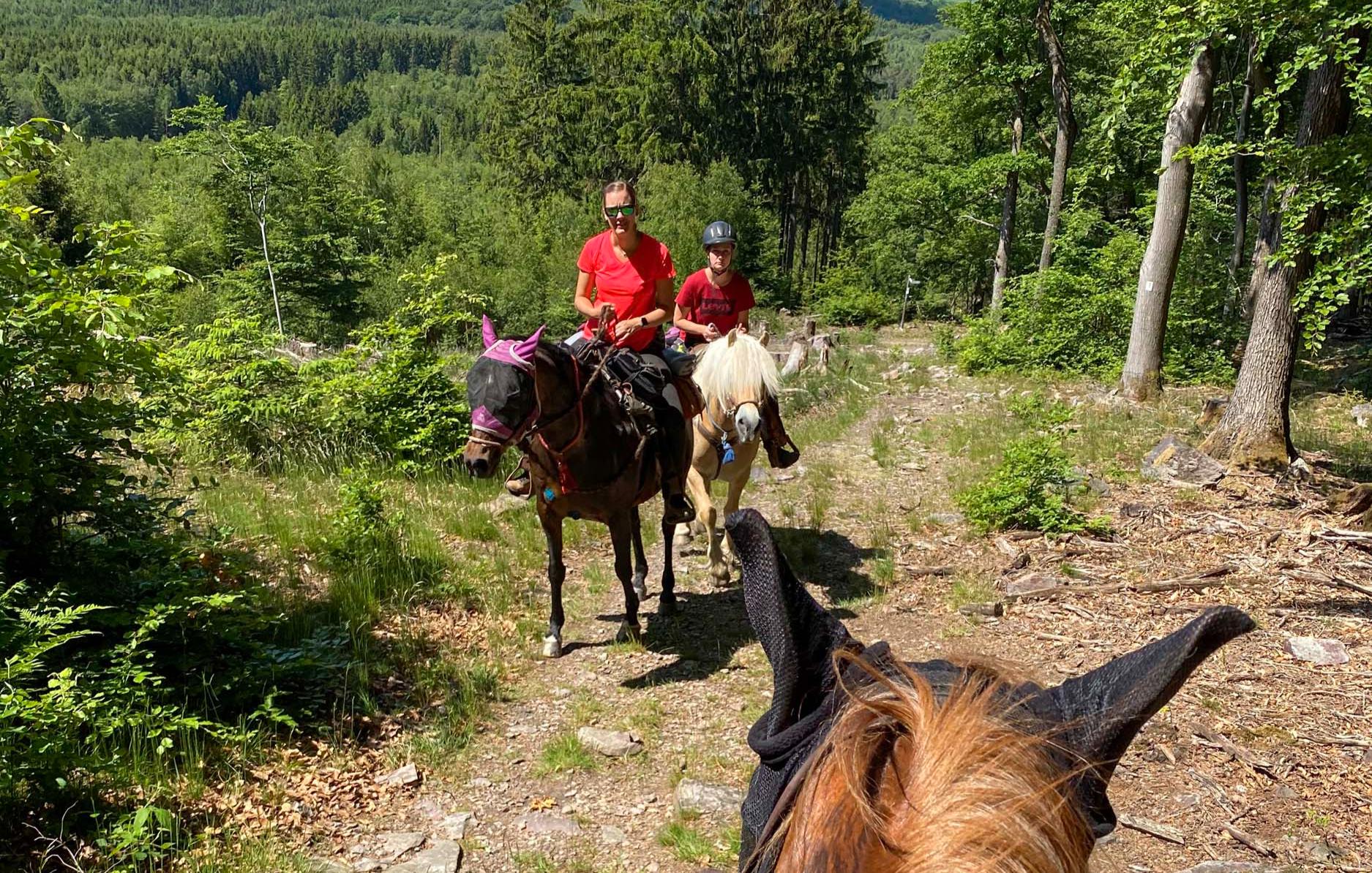 pferde-abenteuer-aschbach-bg2
