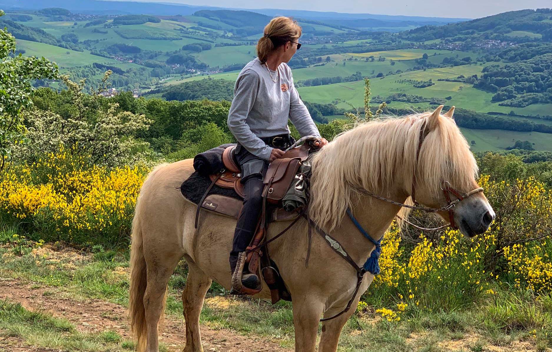 pferde-abenteuer-aschbach-bg3