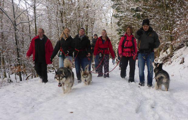 husky-trekking-heinade-outdoor