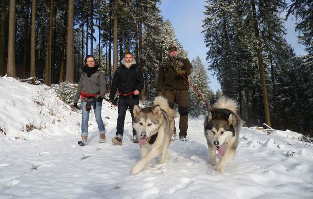 husky-trekking-heinade-schlittenhunde